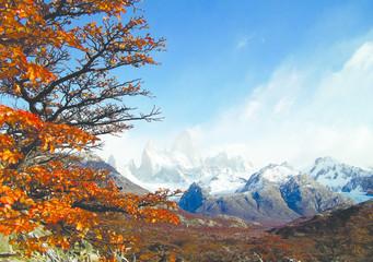 Fototapeta Monte Fitz Roy (3405 m), Parq. Nac. Los Glaciares. Florestas de faias tornam-se alaranjadas no outono. Trilhas conduzem caminhantes para as regiões ainda selvagens das encostas dos Andes. obraz