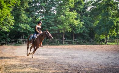 Молодая девушка жокей и скаковая лошадь на тренировке