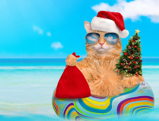 Cat in red Christmas hat relaxing on air mattress in the sea .