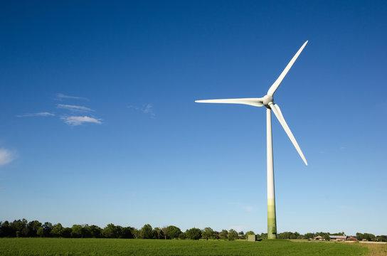 Windmill in a green landscape