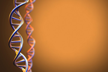 Human DNA Structure Background, 3D Rendering