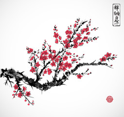 Oriental red sakura cherry tree in blossom on white background. Traditional oriental ink painting sumi-e, u-sin, go-hua. Contains hieroglyphs - zen, freedom, nature