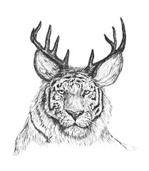Psychedelic hand-drawn sketch Illustration of tiger face with de