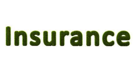 Conceptual Word Insurance Covered By Grass Isolated On White
