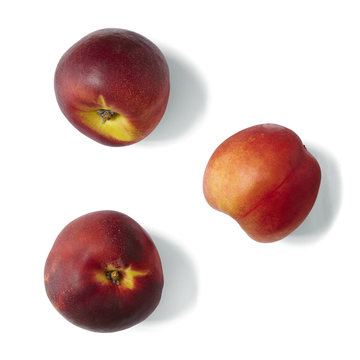 Individual nectarines isolated on a white background