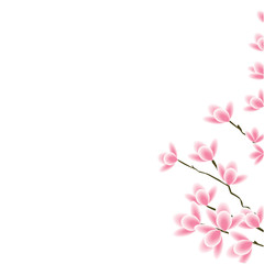 flowers on the branch sakura pink isolated white background element for design vector
