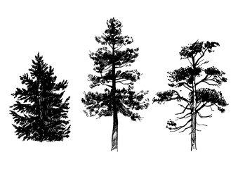 Hand drawn set of trees