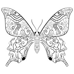 Butterfly vector illustration.Zentangle style.
