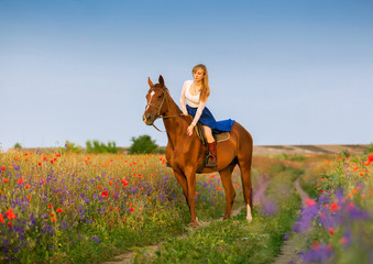 Beautyful blonde woman with horse on a flover field