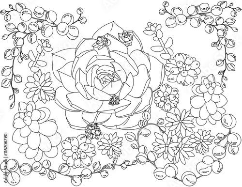 Zentagle Adult Coloring Book Succulent Secret Garden