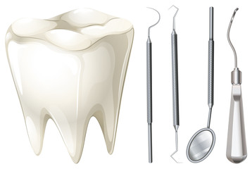 Dental set with tooth and equipment