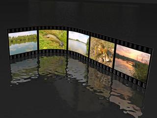 Nature shots