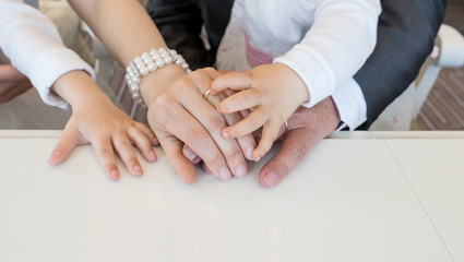 family / Hands of the newlyweds and the little children