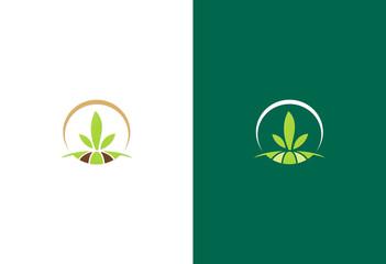 green seed landscape logo