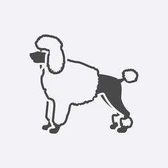 Poodle icon black simple. Singe dog icon from the dog breads set - stock vector