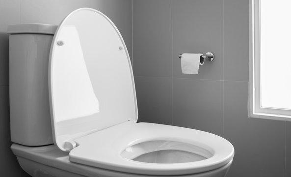 White toilet bowl and bidet in modern design bathroom.