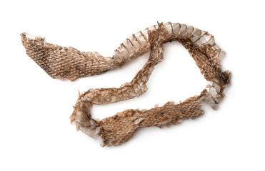 Top view of snake shedding skin