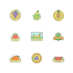 Organic and natural food fruit sticker (logo) vector set.