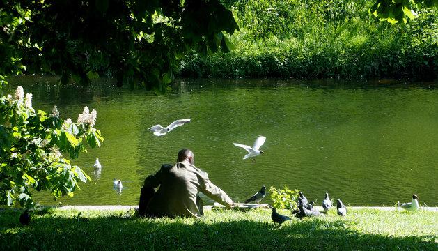 sad person feeding the birds