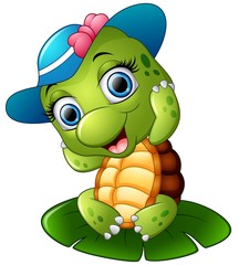 Happy turtle with blue cap on the lotus leaf