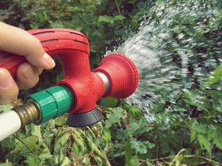 Gardening and watering plants in garden