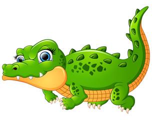 Crocodile cartoon isolated on white background