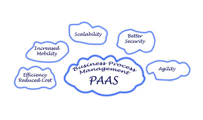 Business Process Management on PAAS