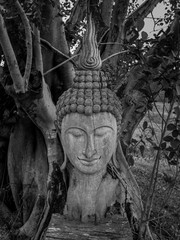 Ancient wooden Buddha statue head cracked and burned on bodhi tree background in hermitage at northern of thailand, Black and White Filte