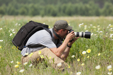 Photographer is taking a picture on green meadow