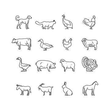 Farm animals vector thin line icons set. Outline cow, pig, chicken, horse, rabbit, goat, donkey, sheep, geese symbols. Set of farm animal illustration pictogram animal in line style