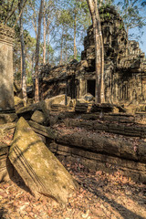 Angkor Wat ruins in rain forest