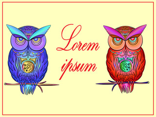 postcard with bright, colorful owls