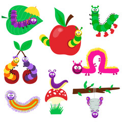 Cute crawling caterpillars set tree element funny insect little bugs. Nature larva caterpillar wildlife bug vector illustration. Cartoon caterpillars cute character different animal worm.