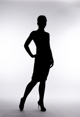 silhouette of a beautiful woman on a white background