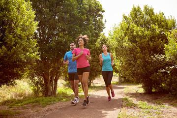 Fototapeta Three joggers on a running trail obraz