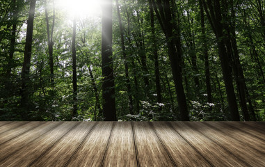 nature sunny day background wooden bottom