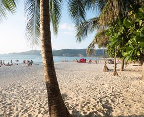 phuket thailand palm beach sand beach