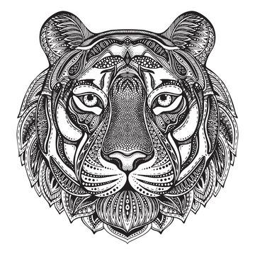Hand drawn graphic ornate tiger