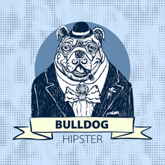 Hand Drawn Vector Portrait of French Bulldog in Pink Tie Bow and Monocle vector