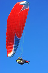 Wall Mural - Paraglider