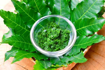 Fresh Thai herb mashed neem leaf on glass bowl with leaves on wooden background.