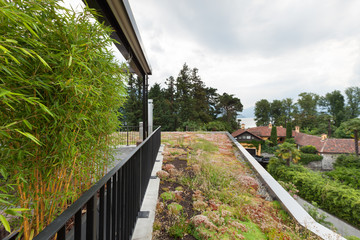 roof terrace of a modern apartment