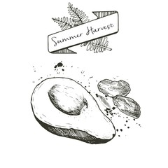 Vector set of summer harvest. Decorated with banner, fern leaves and blots. Avocado and dates.