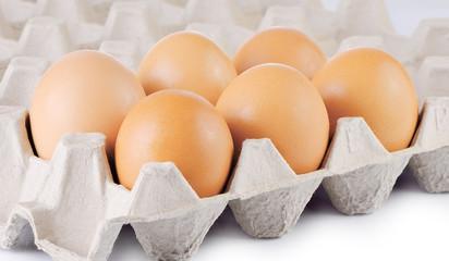 Chicken Egg , egg