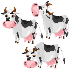White spotted cow in three poses, vector animals