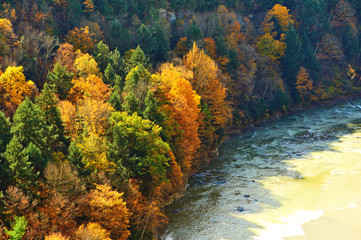 Autumn scene of river and forest