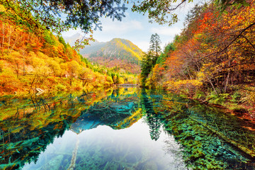 Wonderful view of the Five Flower Lake among fall woods