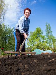 Elderly woman loose soil rake