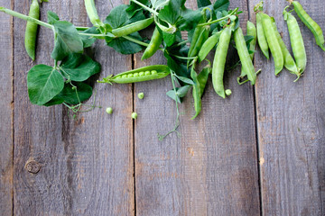 Green peas in pods freshly picked on rustic wooden tableod background. Background layout with free text space.