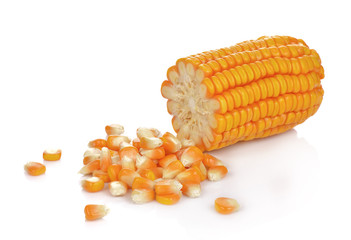 Dried corn kernels isolated on white